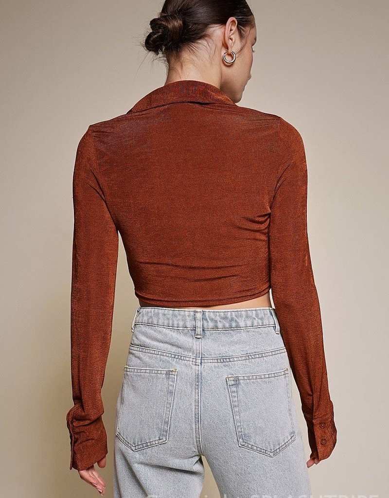 Shimmer Collared Long Sleeve Crop Top