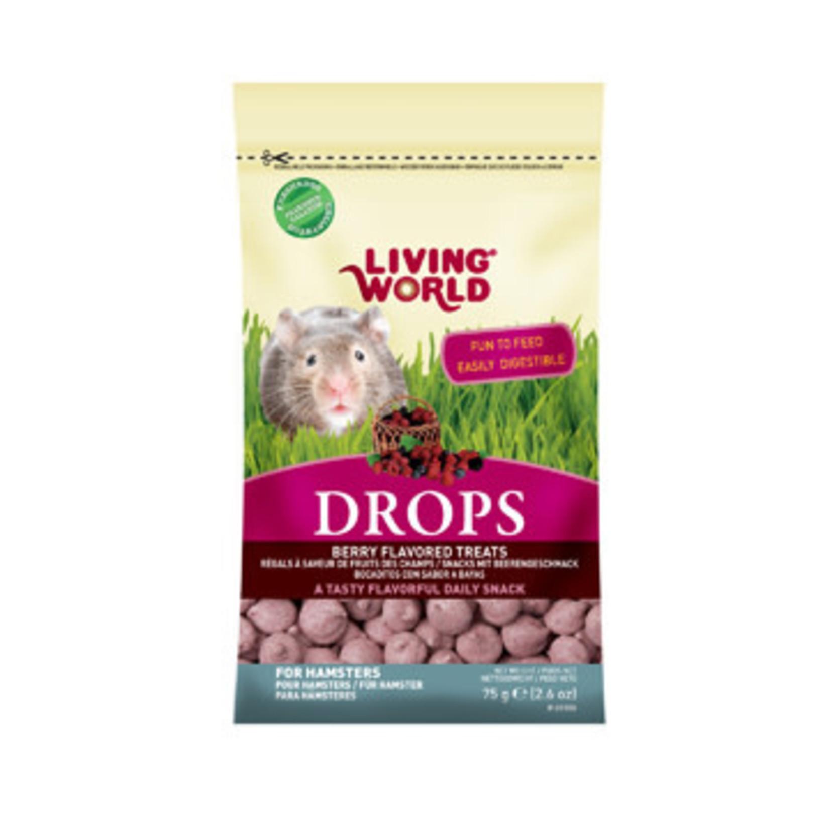 Living World Hamster Fieldberry Treat 75g