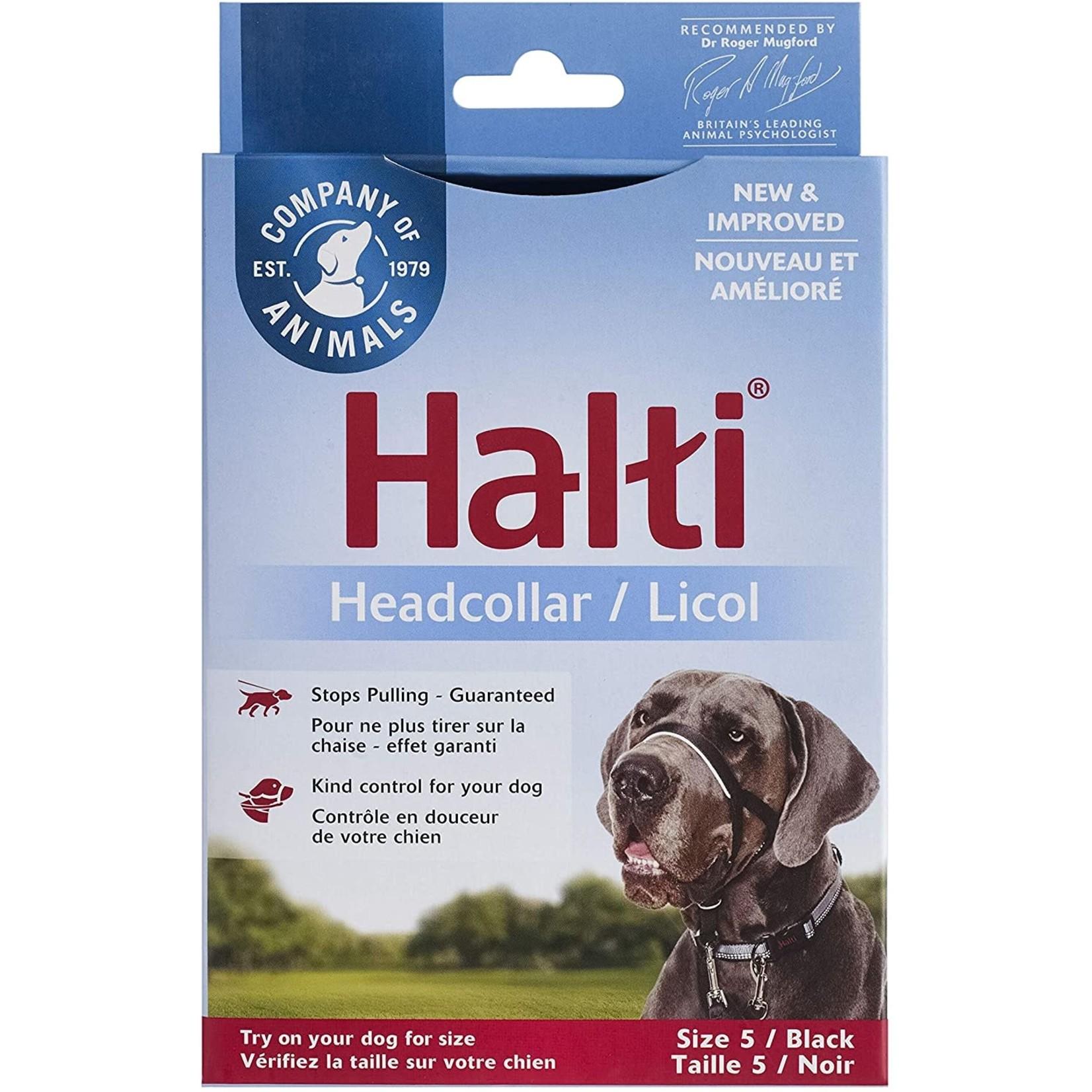 Halti headcollar size5