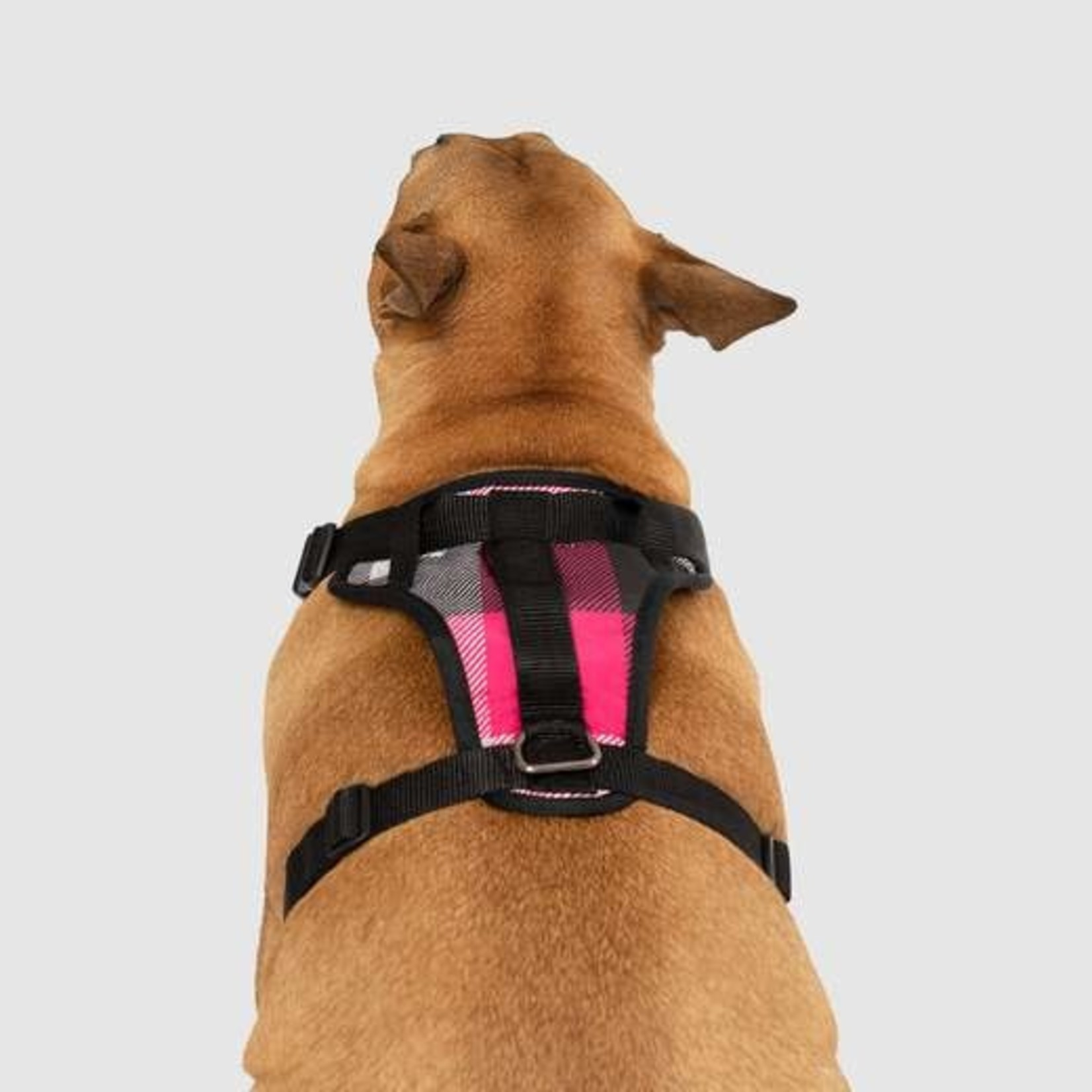 Canada Pooch Everything Harness Pink Plaid