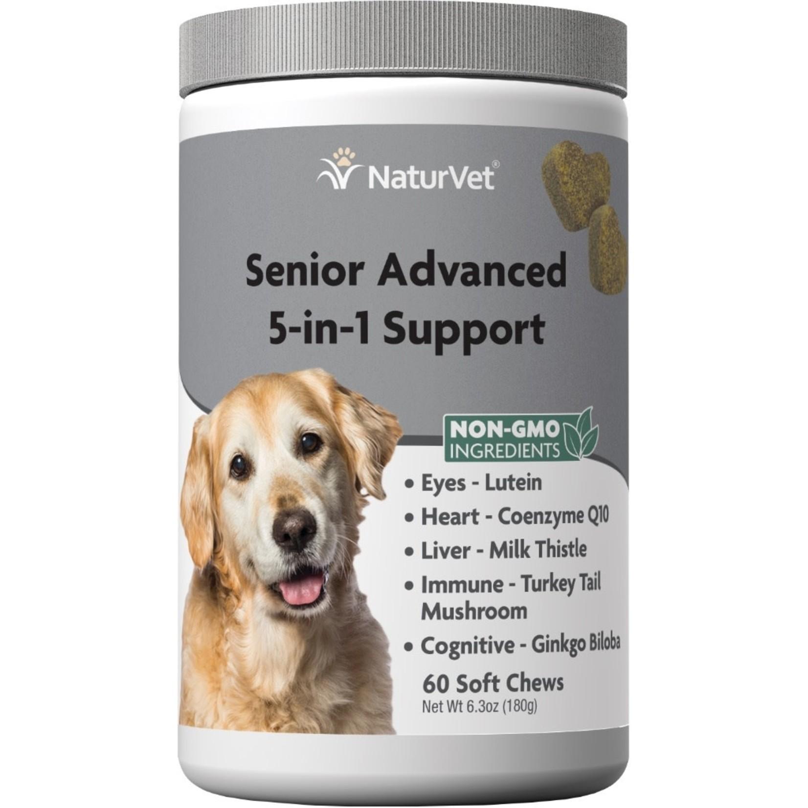 Senior 5-in-1 Support Soft Chew 60CT