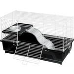KAYTEE KAYTEE My First Home Pet Rat 24x12''