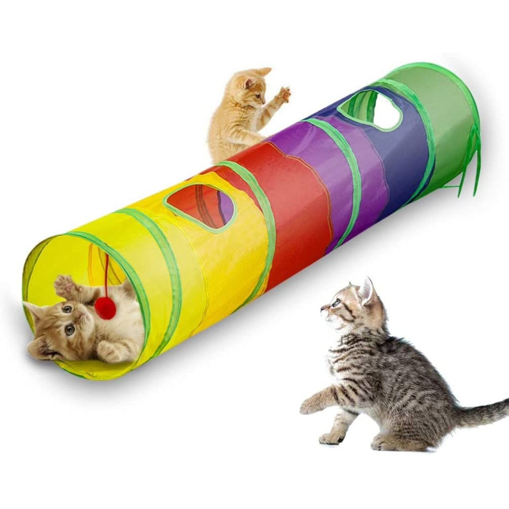 Cat tunnel Colourful