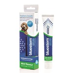 Bluestem Oral Care Toothbrush + Toothpaste Vanilla Mint flavoured Combo 70g