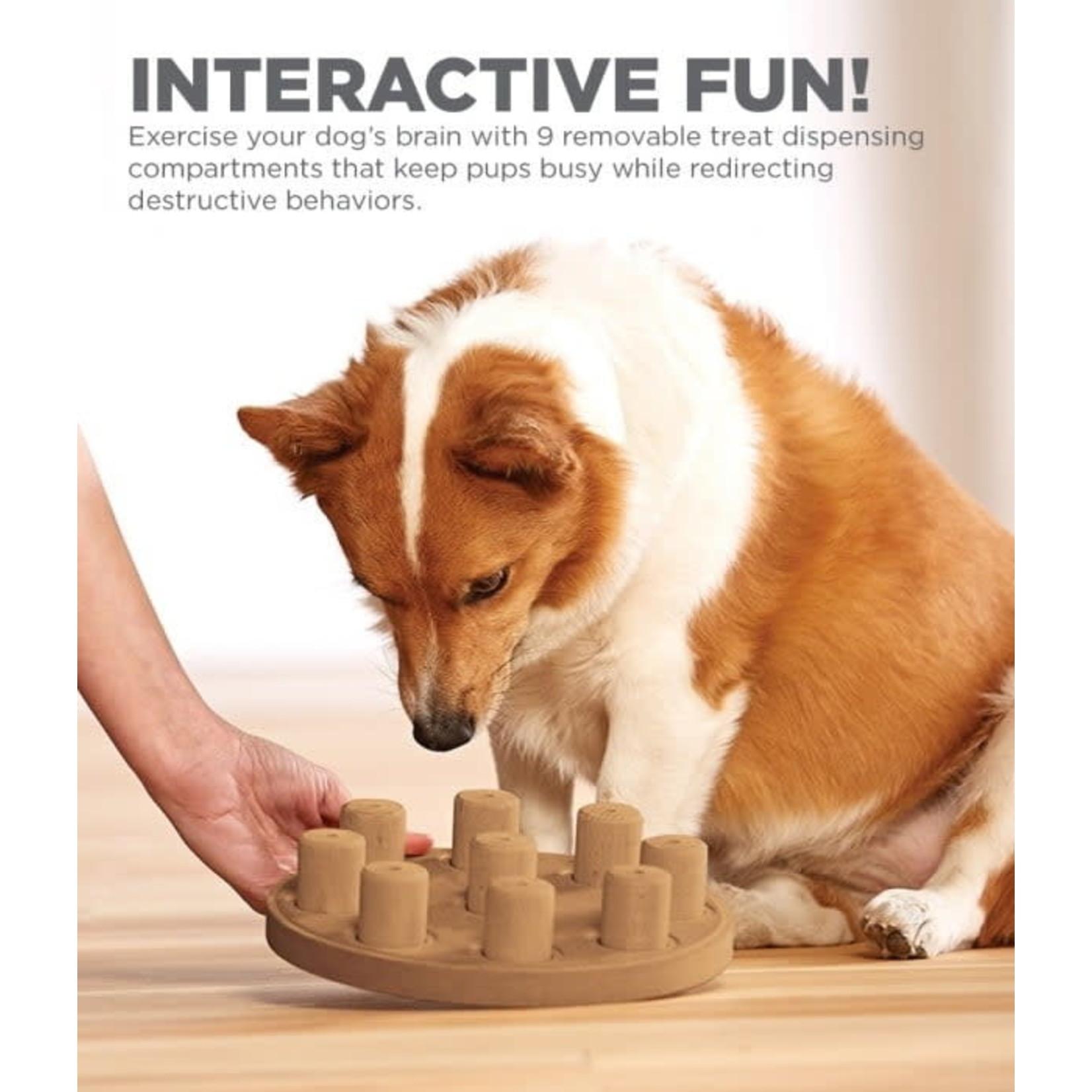 Nina Ottosson Nina Ottosson  Dog Smart Composite Tan Puzzle