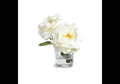 ROSE CUTTING IN GLASS CUBE
