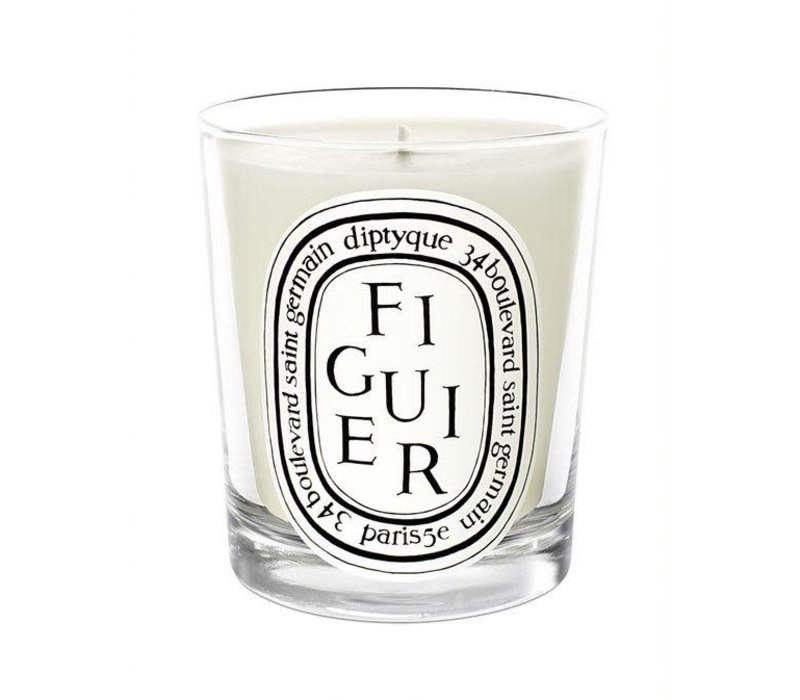 CANDLE FIGUIER