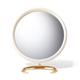 AERIN Aerin Shagreen Vanity Mirror