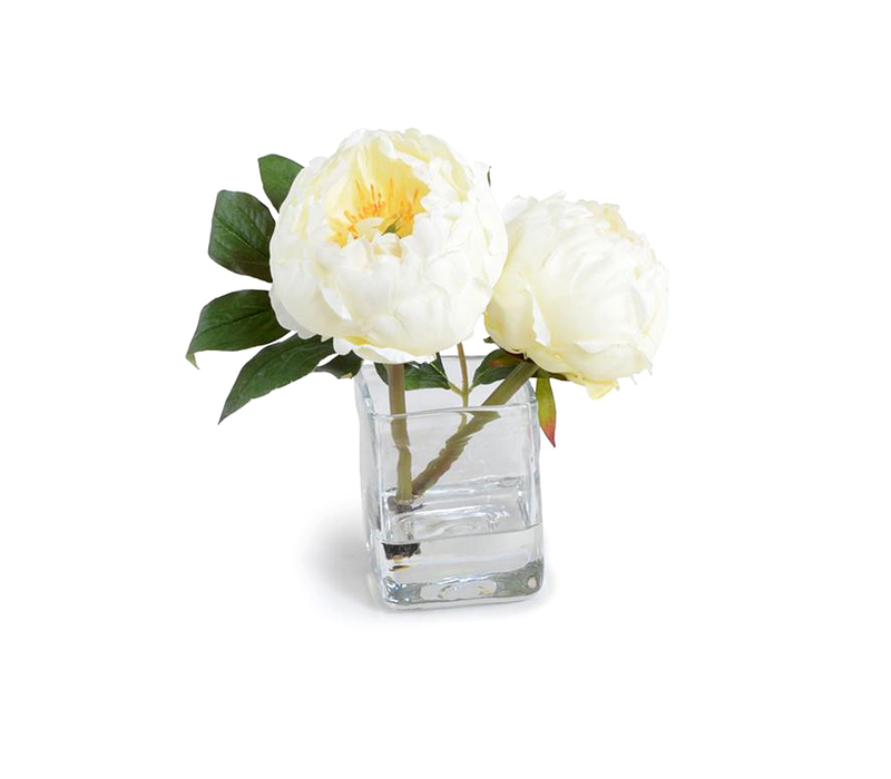 PEONY IN GLASS CUBE WHITE