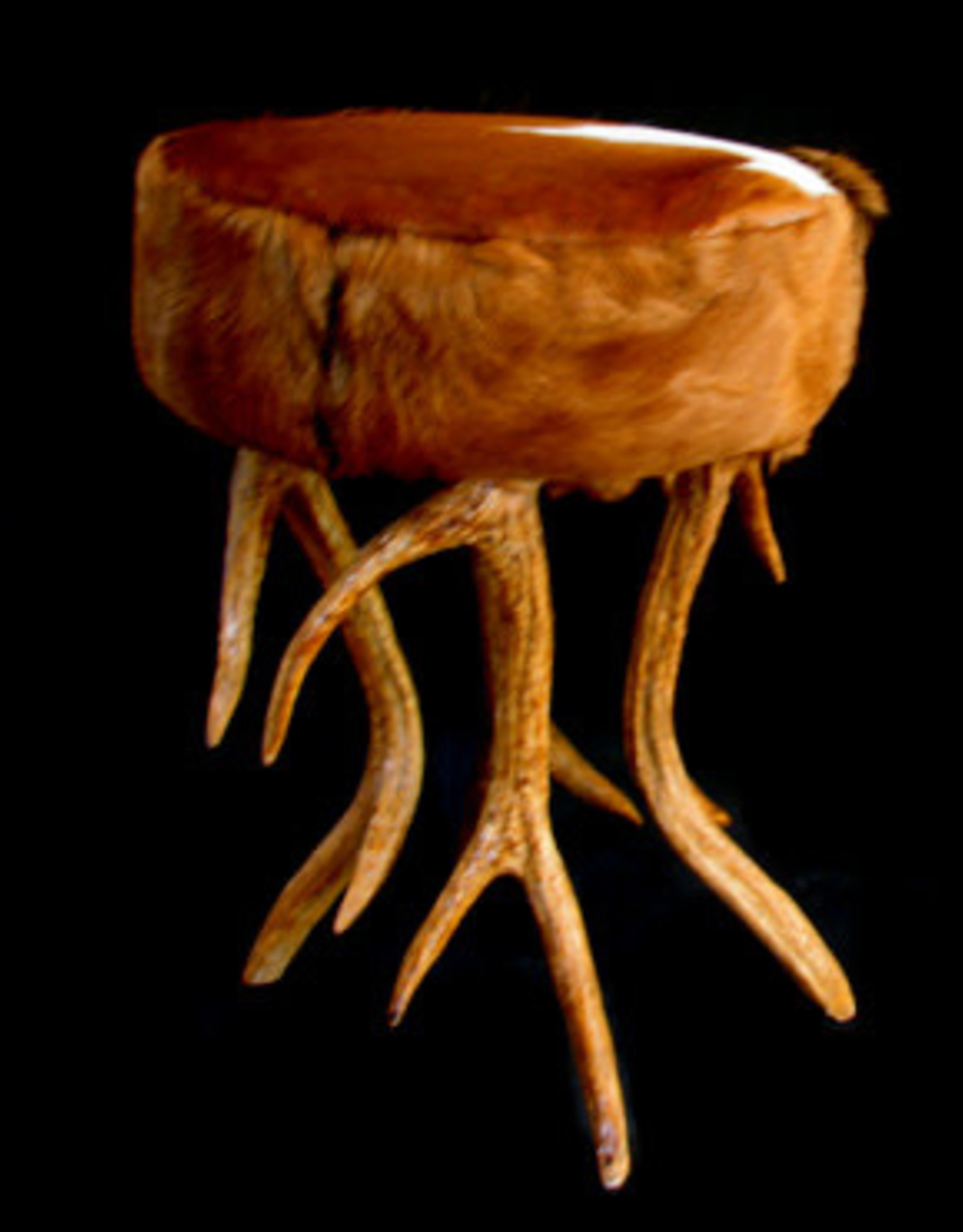 Stool, goat leather with resin Antlers