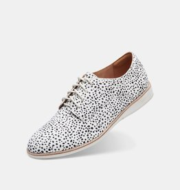 ROLLIE NATION Rollie Nation - Derby Shoe (Snow Leopard)