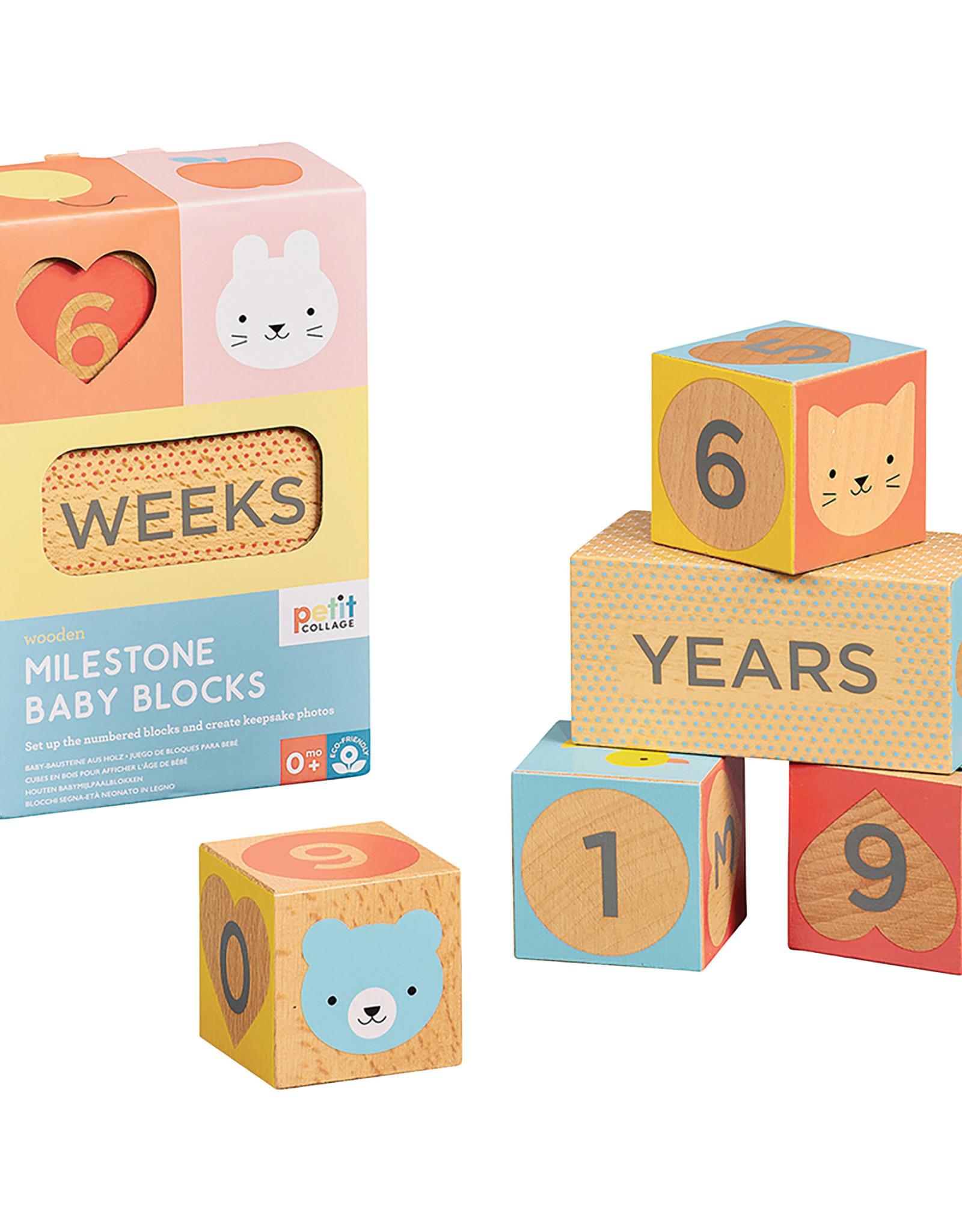 INDEPENDENCE STUDIOS PTC468 Milestone Baby Blocks
