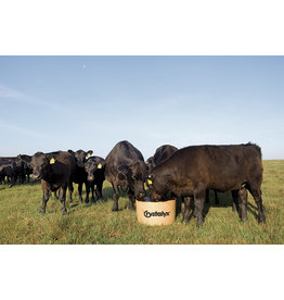 VP 30% Bio Barrel 200lbs Biodegradable, edible barrel  late season pastures, crop residuce, and moderate to low quality harvested forages. Protein 30.0% Fat 4.0% Fiber 3.0% Calcium 2.0% Phosphorus 2.0% Magn. 1.0% Potassium  2.0%