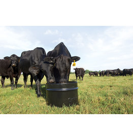 Mineral-lyx Steel 250lbs basic mineral and no Protein for producers with high quality forage who just need minerals and vitamins  Calcium 4.0% Phosphorus 4.0% Mag. 3.0% Vitamin A, Min	220,000 IU/kg Vitamin D-3, Min	22,000 IU/kg Vitamin E, Min220 IU/kg