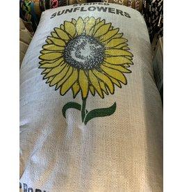 Sunflower Striped 50 lb MN.SS.50L 9999*NNN