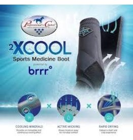 2XCOOL - Sports Medicine Boots - Purple- *pack of 4*  Large - #XC4L-Purple