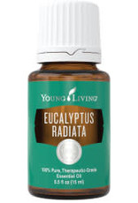 Young Living Eucalyptus Radiata Oil