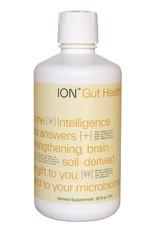 ION Biome ION Gut Health