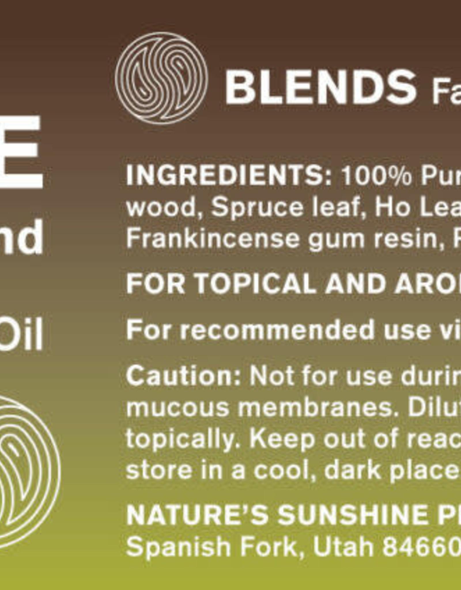 Nature's Sunshine Core balancing  Blend Essential Oil (15 ml)