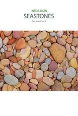 Ned Lagin - Seastones: Set 4 And Set 5 (RSD 2020)