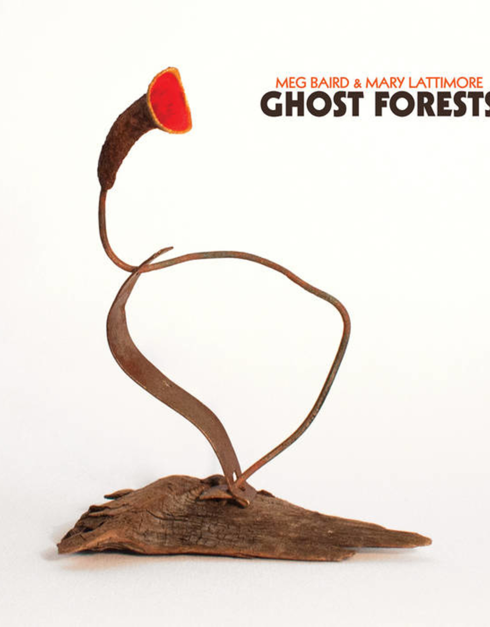 Meg Baird & Mary Lattimore - Ghosts Forests