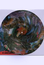 black midi - Cavalcade (Picture Disc)