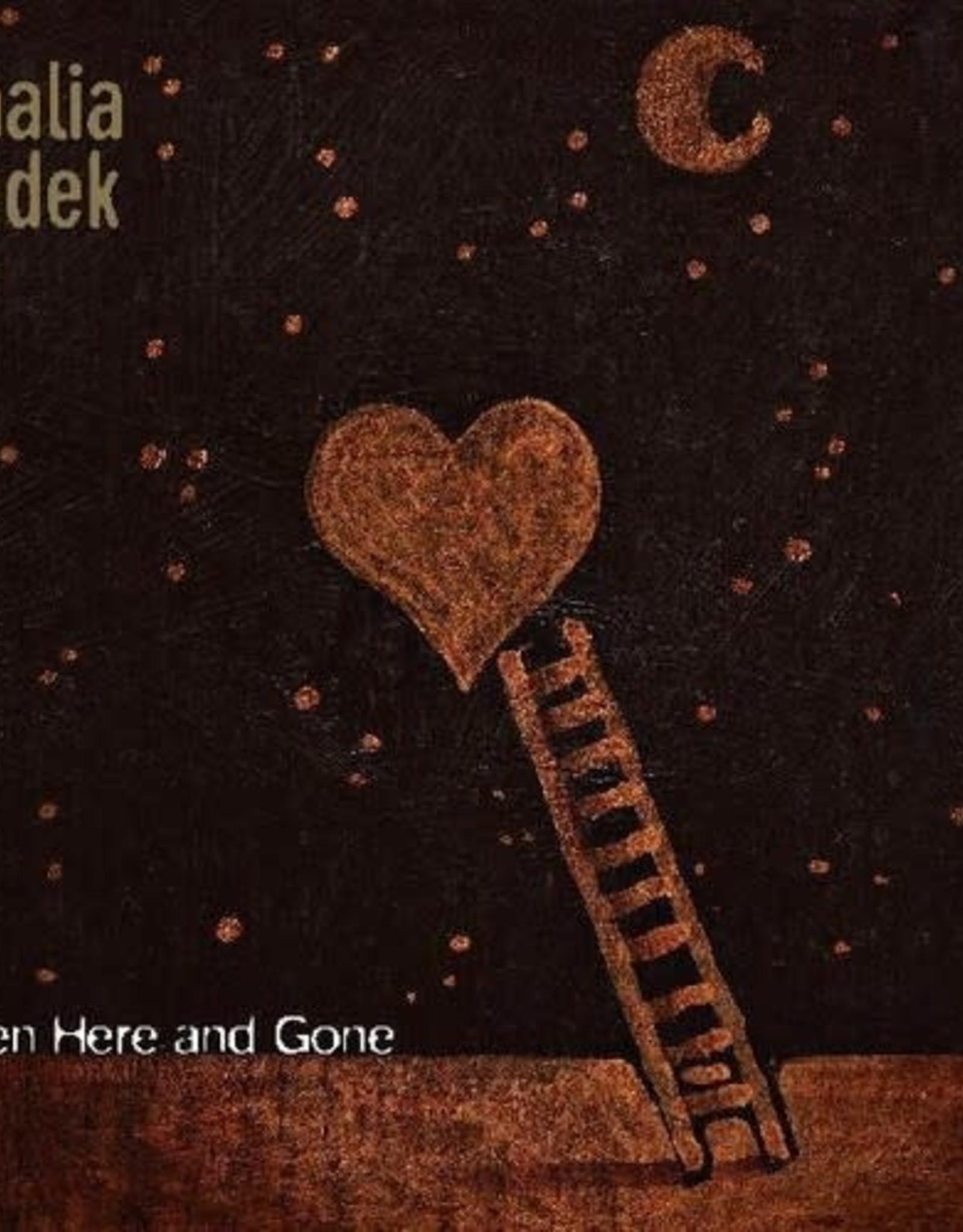 Thalia Zedek - Been Here and Gone (GOLD VINYL, INDIE EXCLUSIVE)