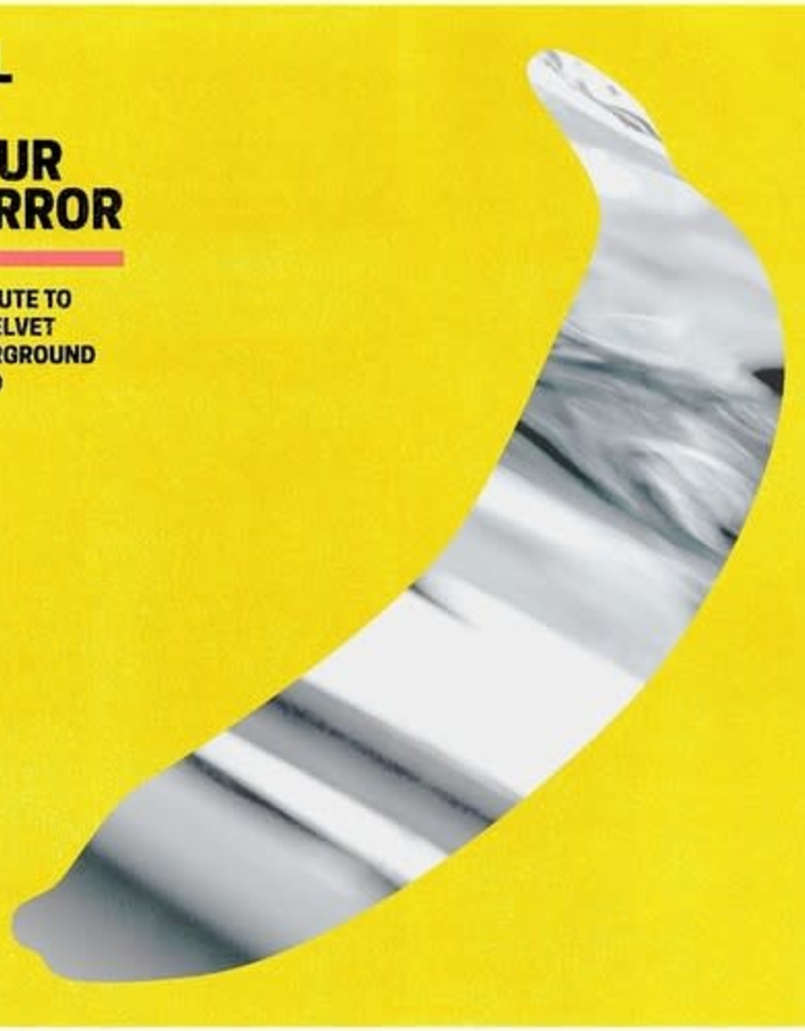 I'll Be Your Mirror: A Tribute To The Velvet Underground & Nico