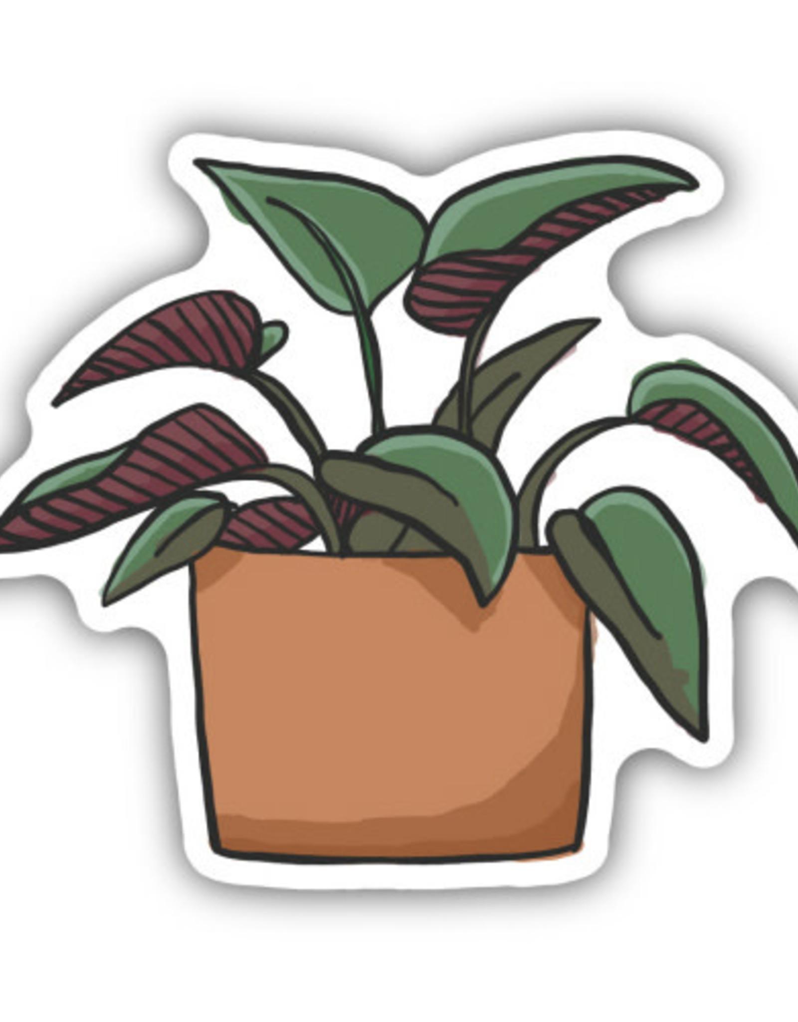 AUTOCOLLANT PLANTE