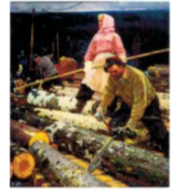 """Belykh """"Young Timbermen"""" Postcard"""