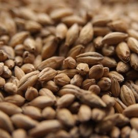 Briess Grains combined Oz