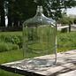 Glass Carboy (6.5 Gallon )