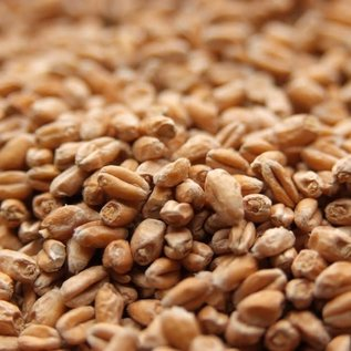 Weyermann Weyermann Pale Wheat 55lb bag