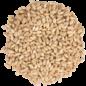 Proximity Malt White Wheat