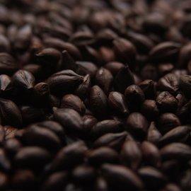 Crisp Roasted Barley 700-800L