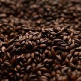 Briess Roasted Barley 300L