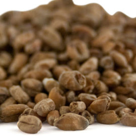 Dark Wheat