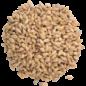 The Swaen Sour Malt (Acidulated Malt )