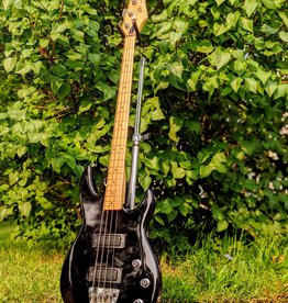Peavey Used U.S.A.-Made Peavey Foundation Bass in Black w/Hardshell Case