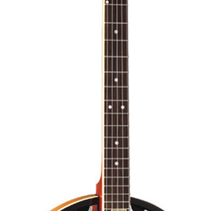 Washburn Washburn B9-WSH-A 5-String Banjo in Sunburst Gloss