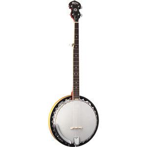 Washburn Washburn B9-WSH-A 5-String Banjo in Sunburst Gloss