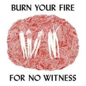 Angel Olsen / Burn Your Fire For No Witness