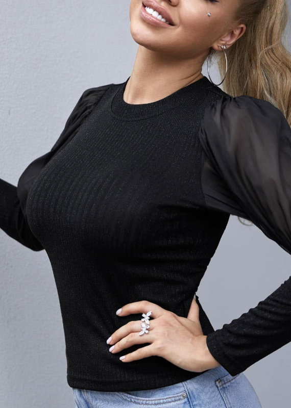 Lurex top w/sheer sleeve