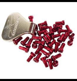 ATOMLAB SPOKE NIPPLE ATOMLAB TORQUE RED 36 PIECE W/TOOL