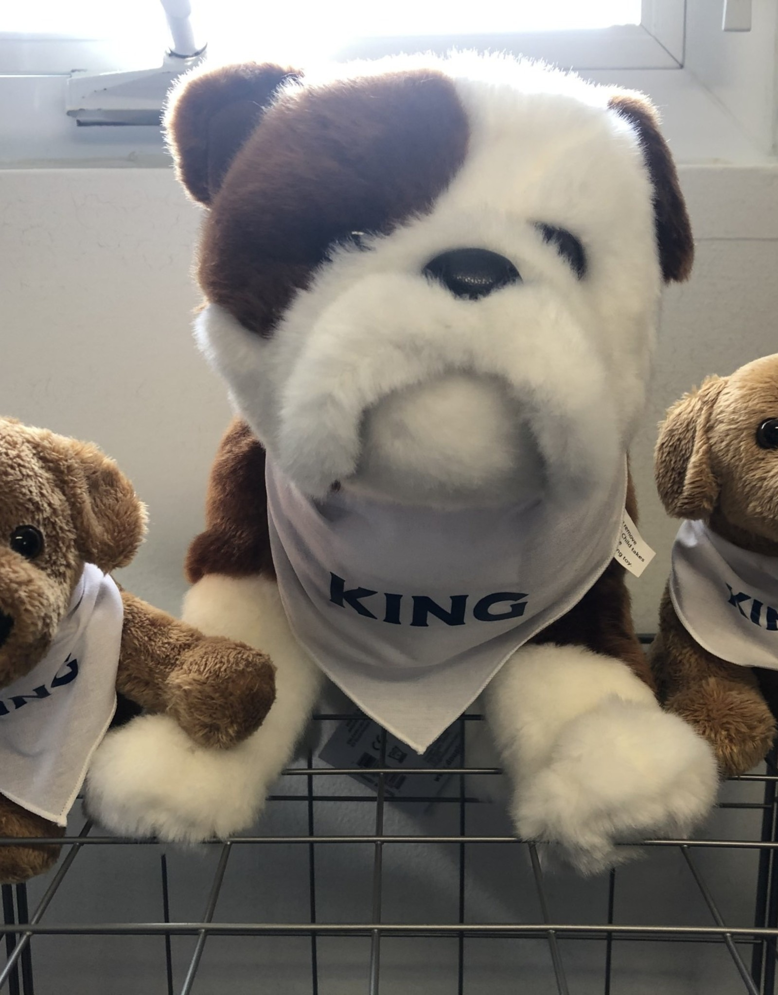 King Dogs
