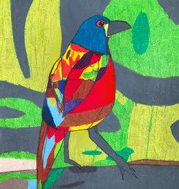 Create Colorful Bird