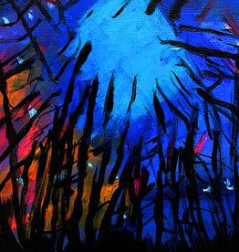 Create Blank-Night Light