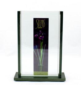 Stems Vases VASE V2 -  6″W x 9″T