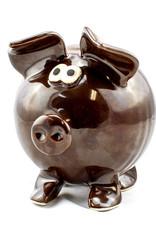 Clay in Motion Handmade Ceramic Piggy Bank