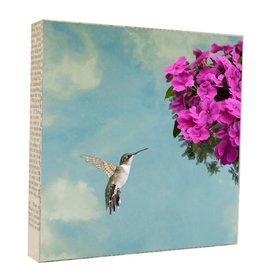 MKC Photography Humming Bird Art Block